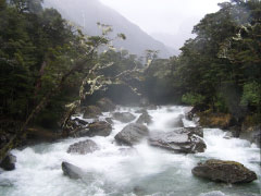 Routeburn Classic Adventure